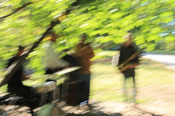 Blurry Jazzmen / Jeu de flou sur le jazz mean