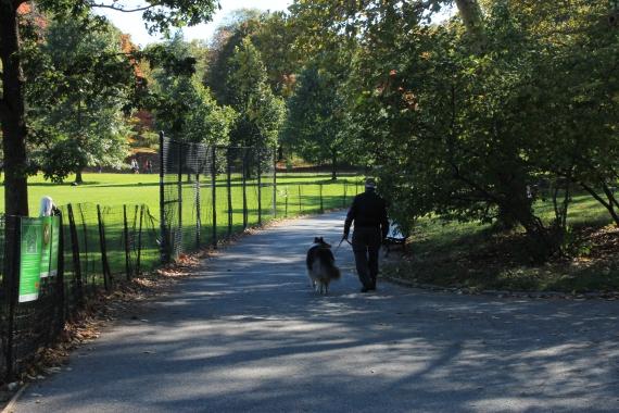 A man with his dog / Un homme et son chien