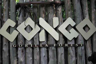 The Bronx Zoo