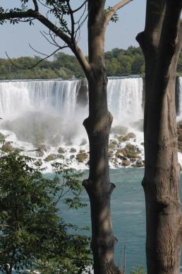 The little falls