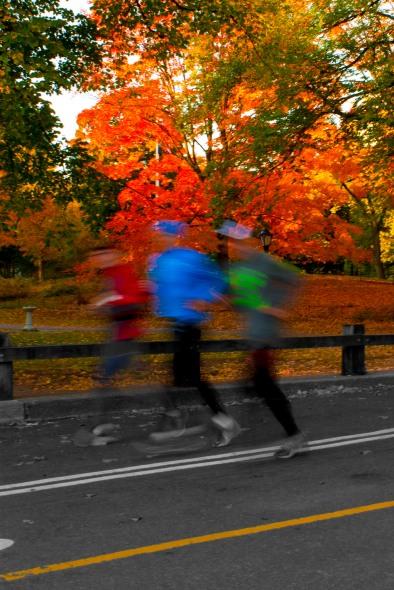 Central Park Joggers