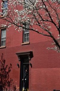 Blossom - West Village NYC